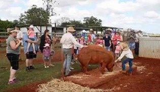June Farm Tour